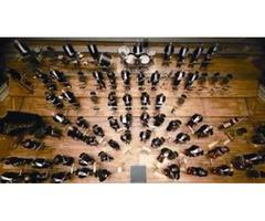 Vacante temporal de trompeta de la Nürnberger Symphoniker