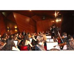 Convocatoria Extraordinaria de Acceso 2016/2017 de la Orquesta Sinfónica de la UCM