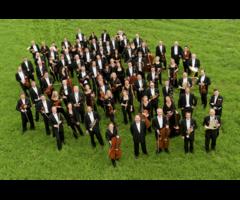 Audiciones para una plaza de trompa de la Mozarteumorchester Salzburg