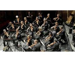 Audiciones para una plaza de violín en Philharmonia Zürich