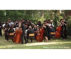 Convocatoria de audiciones para la Academia Orquesta Sinfónica de Navarra