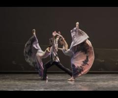 Víctor Ullate Ballet convoca audiciones de bailarines