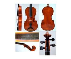Se vende Viola profesional Fernando Solar 1977